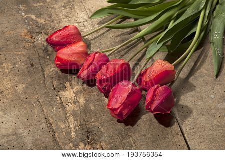 Bouquet Of Tulips On Vintage Wooden Surface Background