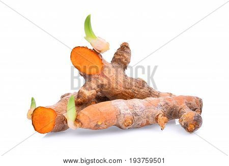 tropical herbs turmeric root with sapling isolated on white background