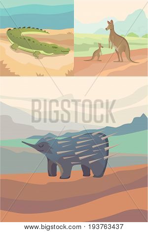 Australian animals vector crocodile, kangaroo and echidna flat style .