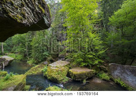 the national park Czech Switzerland, Crech republic