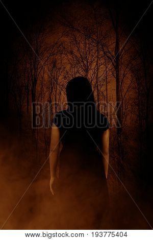 Ghost woman in the wood,Horror concept background