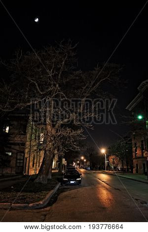 Dark urban city street at night with moon, large scary tree and car