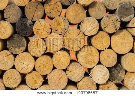 Close-up pile of wooden sawn logs with cross section of the timber, firewood stack, for ecologik background or texture