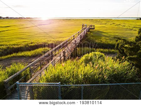 Wooden Bridge Over A Swamp In Wildwood New Jersey