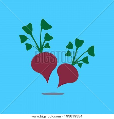 Beetroot vegetable logo icon template design. Purple beet icon logo. Fresh vegetarian concept. Health vegetarian logo isolated on pattern background. Cool simple flat design beetroot symbol.