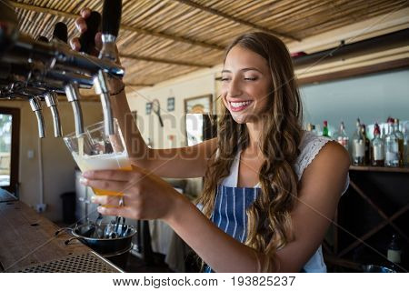 Happy young barmaid pouring beer from tap in glass at restaurant
