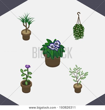 Isometric Houseplant Set Of Flowerpot, Flower, Fern And Other Vector Objects. Also Includes Houseplant, Plant, Hanging Elements.