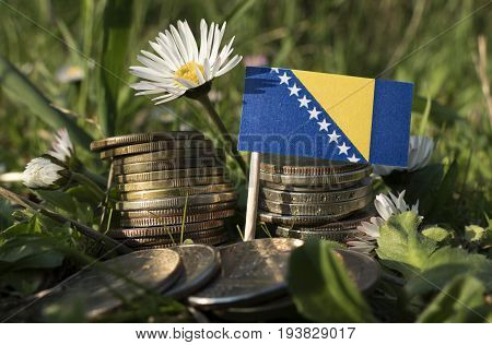 Bosnia And Herzegovina Flag With Stack Of Money Coins With Grass And Flowers