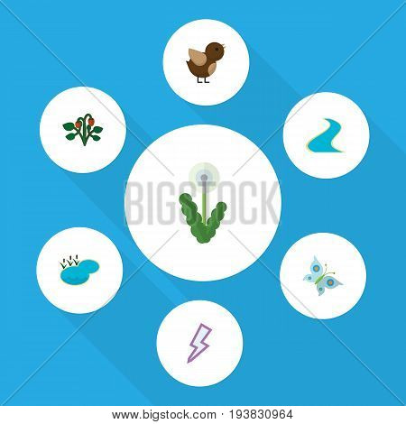 Flat Icon Ecology Set Of Berry, Tributary, Pond And Other Vector Objects. Also Includes Berry, Estuary, Floral Elements.