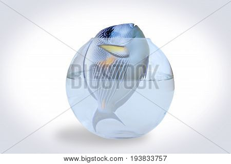 3D illustration of a big fish with no place to live.