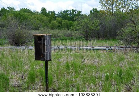 A birdhouse in the wetland during summer