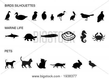 Many Animals Silhouettes