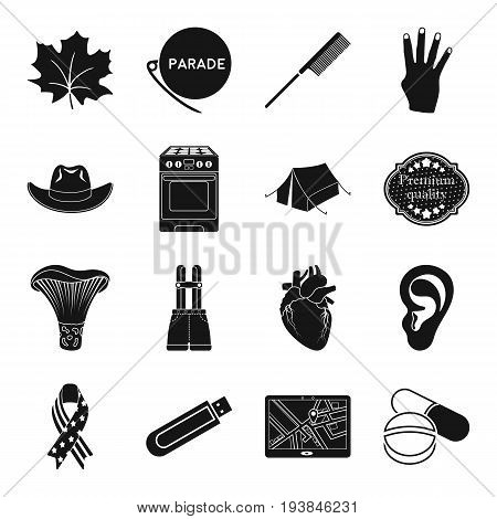 medicine, kitchen, equipment and other  icon in black style. hairdresser, gay, Canada, holiday icons in set collection.