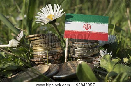 Iranian Flag With Stack Of Money Coins With Grass And Flowers