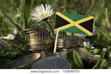 Jamaican Flag With Stack Of Money Coins With Grass And Flowers