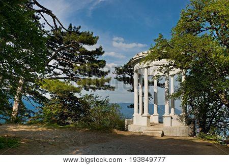 Silver Arbor Near Yalta, Crimea