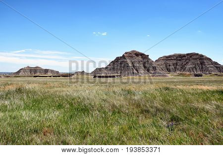 Badlands National Park. The parkâ??s 244,000 acres protect an expanse of mixed-grass prairie that support bison, bighorn sheep, prairie dogs, and black-footed ferrets.