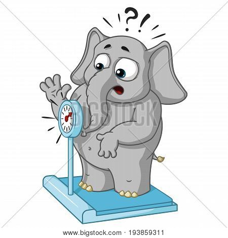 Big collection vector cartoon characters of elephants on an isolated background. Weighed on the scales