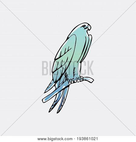 Hand-drawn pencil graphics, vulture, eagle, osprey, falcon, hawk, scavenger, condor, karkar, kite.Engraving, stencil style. Bird predator.Logo,sign,emblem,symbol Stamp,seal. Simple illustration Sketch