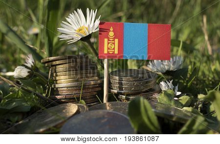 Mongolian Flag With Stack Of Money Coins With Grass And Flowers