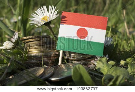 Niger Flag With Stack Of Money Coins With Grass And Flowers