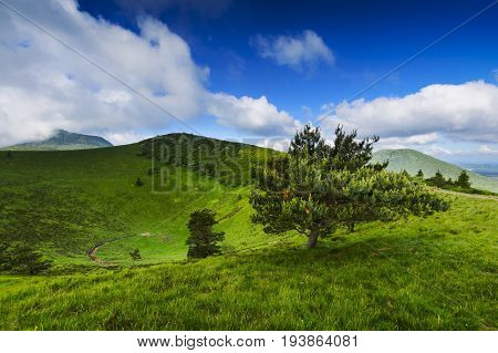 Puy Pariou, An Old Volcano In Auvergne