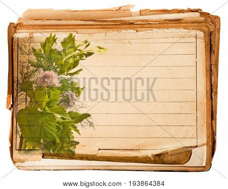 old page from old book with herbs
