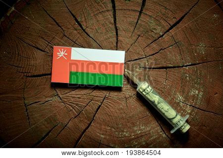 Omani Flag On A Stump With Syringe Injecting Money In Flag