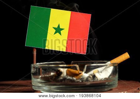 Senegal Flag With Burning Cigarette In Ashtray Isolated On Black Background