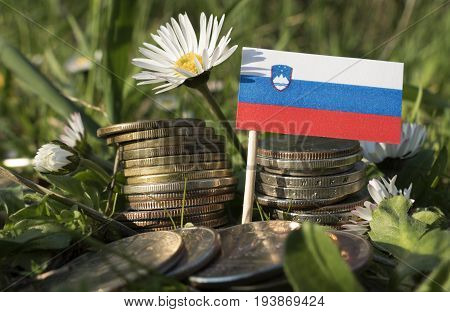 Slovenian Flag With Stack Of Money Coins With Grass And Flowers