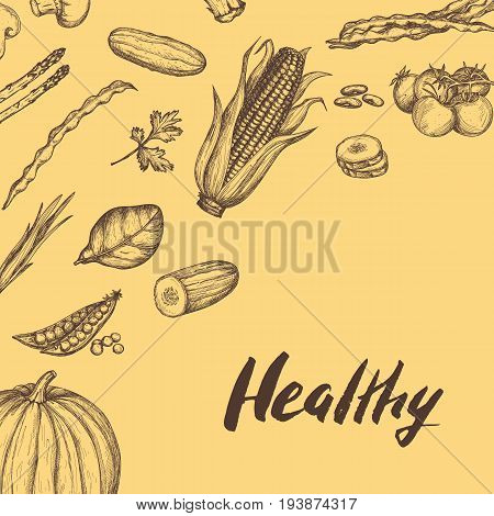 Healthy vegan food vintage background vector illustration. Vegetarian product banner, fresh and natural vegetables design. Pumpkin, spinach, peas, tomato, asparagus, corn hand drawn sketches.