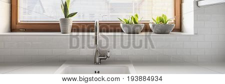 Sink on a spacious white worktop by big window with plants