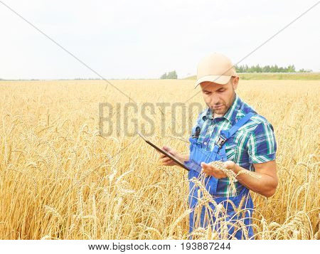 Farmer In A Plaid Shirt Controlled His Field And Working At Tablet.
