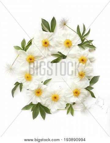 Empty paper in the middle of floral wreath frame made of white peony flowers green leaves and pasque-flower seeds with space for text on white background. Top view flat lay.