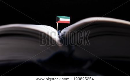 Kuwaiti Flag In The Middle Of The Book. Knowledge And Education Concept.