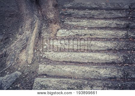 Dark Old stone concrete shabby steps close-up