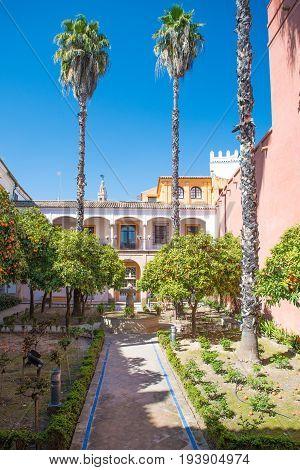 Courtyard At The Alcazar, Seville, Andalucia, Spain