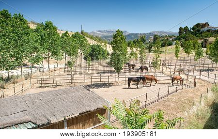 Horse Stables, Ronda, Andalucia, Spain