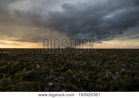 Seagrass landscape with raincloud at sunset Gili Air, Lombok, Indonesia