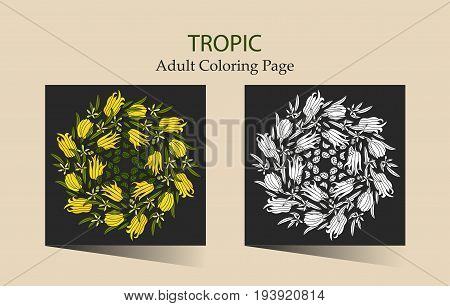 Round vector ornament with tropical citron fruits. Cloring page for adults.