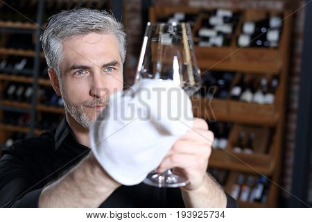 The bartender cleans the glass.  A handsome bartender polishes a glass of wine glasses
