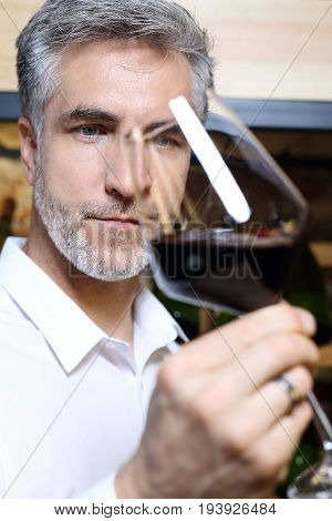 A handsome man judges the color of red wine.