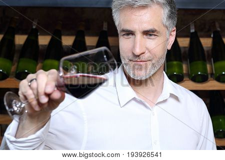 Sommelier tasting red wine.A handsome man judges the color of red wine.