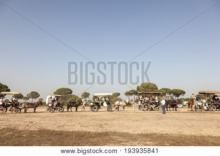 El Rocio Spain - June 1 2017: Pilgrims procession with horse-drawn carriages on the road to El Rocio during the Romeria 2017. Province of Huelva Almonte Andalusia Spain