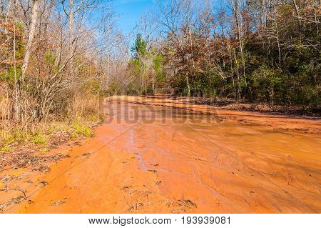 Red clay watercourse of creek and thicket in Providence Canyon State Park at sunny autumn day Georgia USA