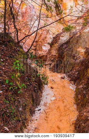 The loamy red footpath between the walls of Providence Canyon at its bottom USA