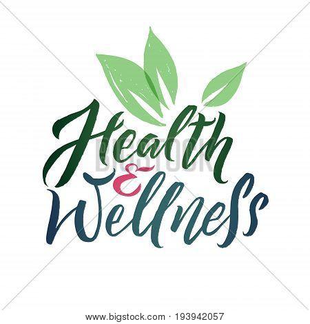 Health and Wellness Studio Vector Logo. Stroke Green Leaf Illustration. Brand Lettering.