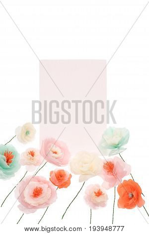 Tender Decorative Papercraft Flowers With Blank Card Isolated On White