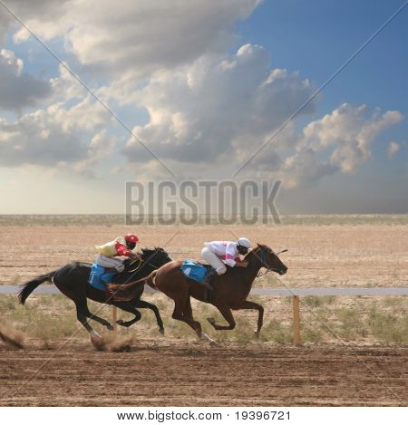 Horses on jumps