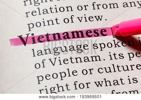 Fake Dictionary Dictionary definition of the word Vietnamese. including key descriptive words.